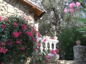 "Ferienhaus ""Casa Rochin"" Dolceacqua an der Blumenriviera"