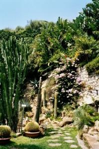 Bordighera- Exotischer Garten Pallanca. Im Urlaub an der italienischen Riviera. Unser Ferienhaus in Ligurien
