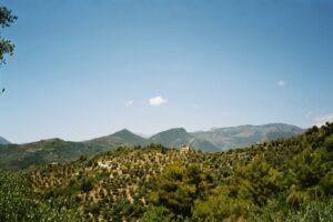 Dolceacqua. Olivenhaine vor San Gregorio. Urlaub an der italienischen Riviera.