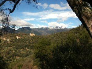 Dolceacqua. Blick auf San Gregorio vom Ferienhaus