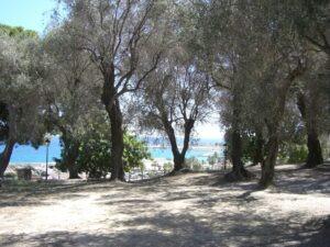 Menton. Le Parc du Pian. Urlaub an der italienischen Riviera in Ligurien