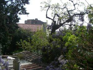 Roquebrune. Ein verwilderter Garten. Urlaub an der italienischen Riviera in Ligurien.