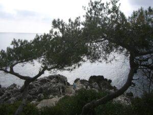 Spazierweg Le Corbusier. Roquebrune Cap Martin bei Menton nach Monaco