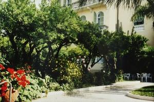 Im Garten von Hotel Villa Elisa. Bordihgera an der Blumenriviera