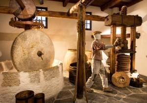 Imperia. Ligurien. Olivenmuseum