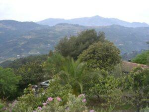 Wanderung in der Umgebung vom Ferienhaus Casa Rochin bei Dolceacqua