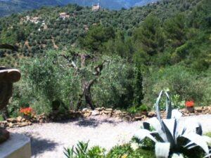 Blick vom Ferienhaus Casa Rochin in Dolceacqua in Ligurien an der italienischen Riviera