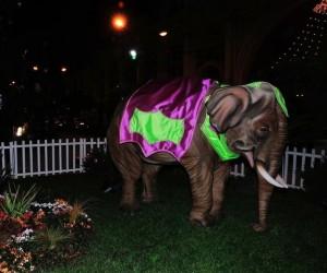 Zirkusszenen aus der Zitronenstadt Menton zwischen Weihnachten und Neujahr