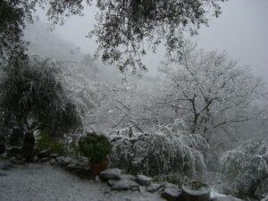 der Schnee kam über Nacht...