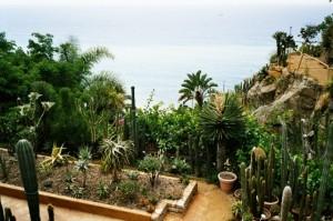 Bordighera. Giardino Esotico Pallanca. Unser Ferienhaus in Ligurien an der italienischen Riviera