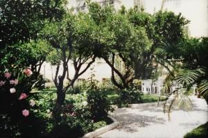 Bordighera. Im Garten von Hotel Villa Elisa. Urlaub an der italienischen Riviera in Ligurien