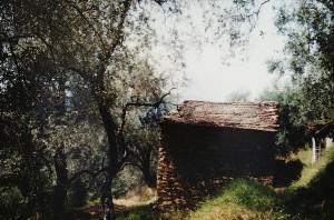 Unser Ferienhaus in Ligurien. Abenteuerbericht.Ein altes Rustico ...