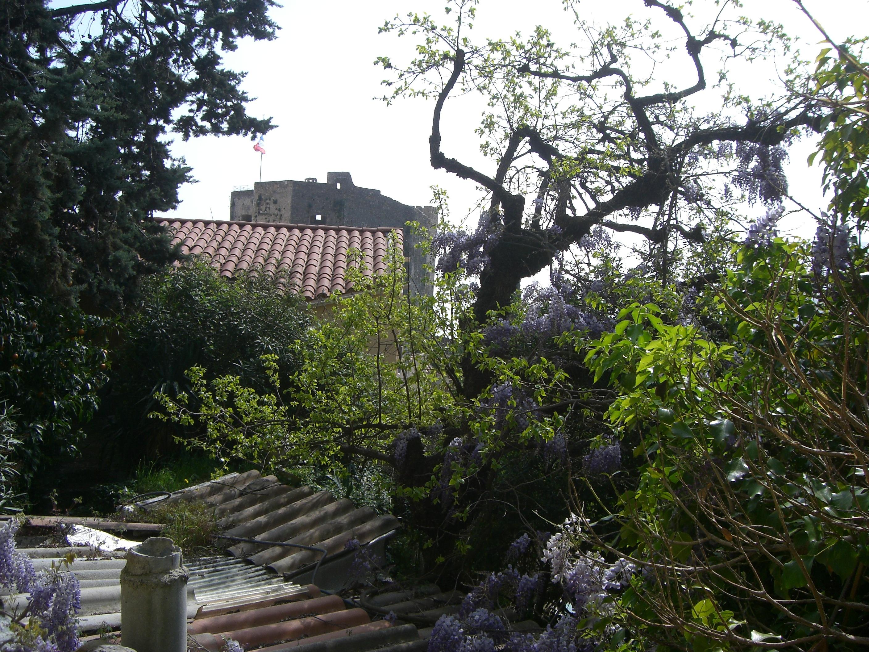 Roquebrune Ein Verwilderter Garten Urlaub An Der Italienischen