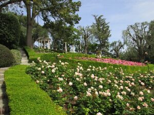 Saint Jean Cap Ferrat. Der Rosengarten Villa Ephrussi de Rothschild
