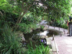 Der japanische Garten. Villa Ephrussi de Rothschild in Saint Jean Cap Ferrat an der Côte d'Azur