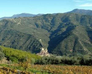 Panoramablick auf Dolceacqua vom Weingut Terre Bianche