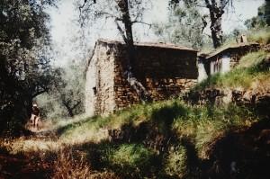 ein kleines Rustico. Unser Haus in Ligurien. Abenteuerbericht mit Folgen..