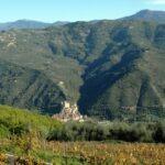 Wein und wandern. Herbst in Ligurien an der italienischen Riviera