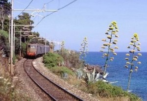 die alte Bahnstrecke