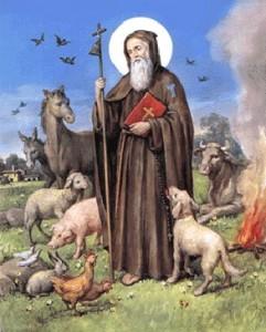 Segnung der Tiere am Festtag des Sant Antonio Abate