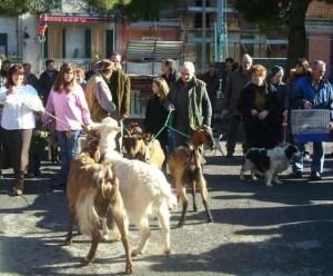 Segnung der Tiere. Zum Fest des Heiligen Antonius