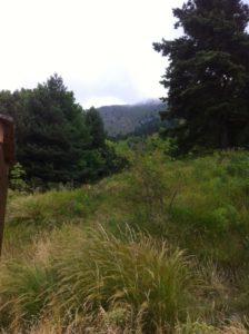 inmitten des Naturparks ligurische Alpem