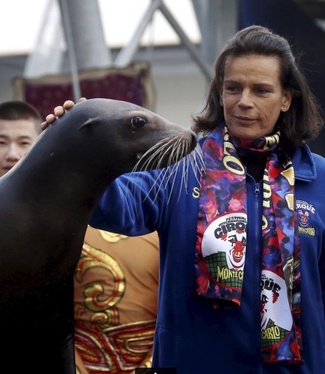 S.A.S. Prinzessin Stefanie mit Seehund