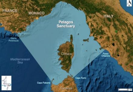 Pelagos Sanctuary